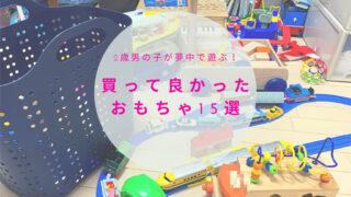 2歳男の子が夢中で遊ぶ買って良かったおもちゃ15選